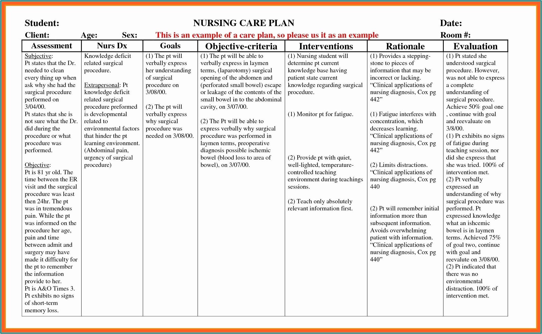 Elderly Care Plan Example