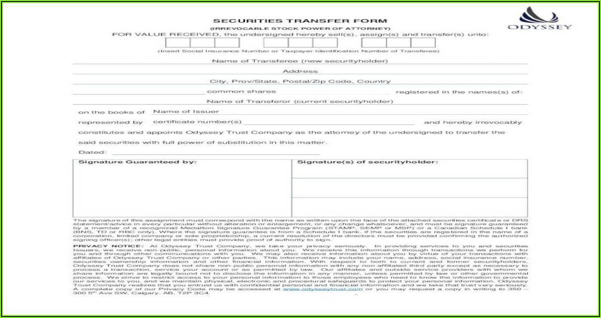 Irrevocable Power Of Attorney Form