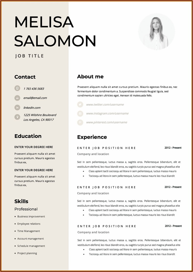 Microsoft Word Professional Resume Templates
