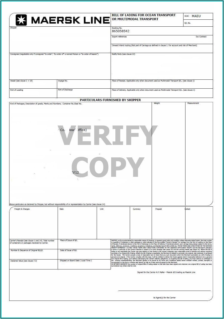 Ocean Freight Bill Of Lading Template