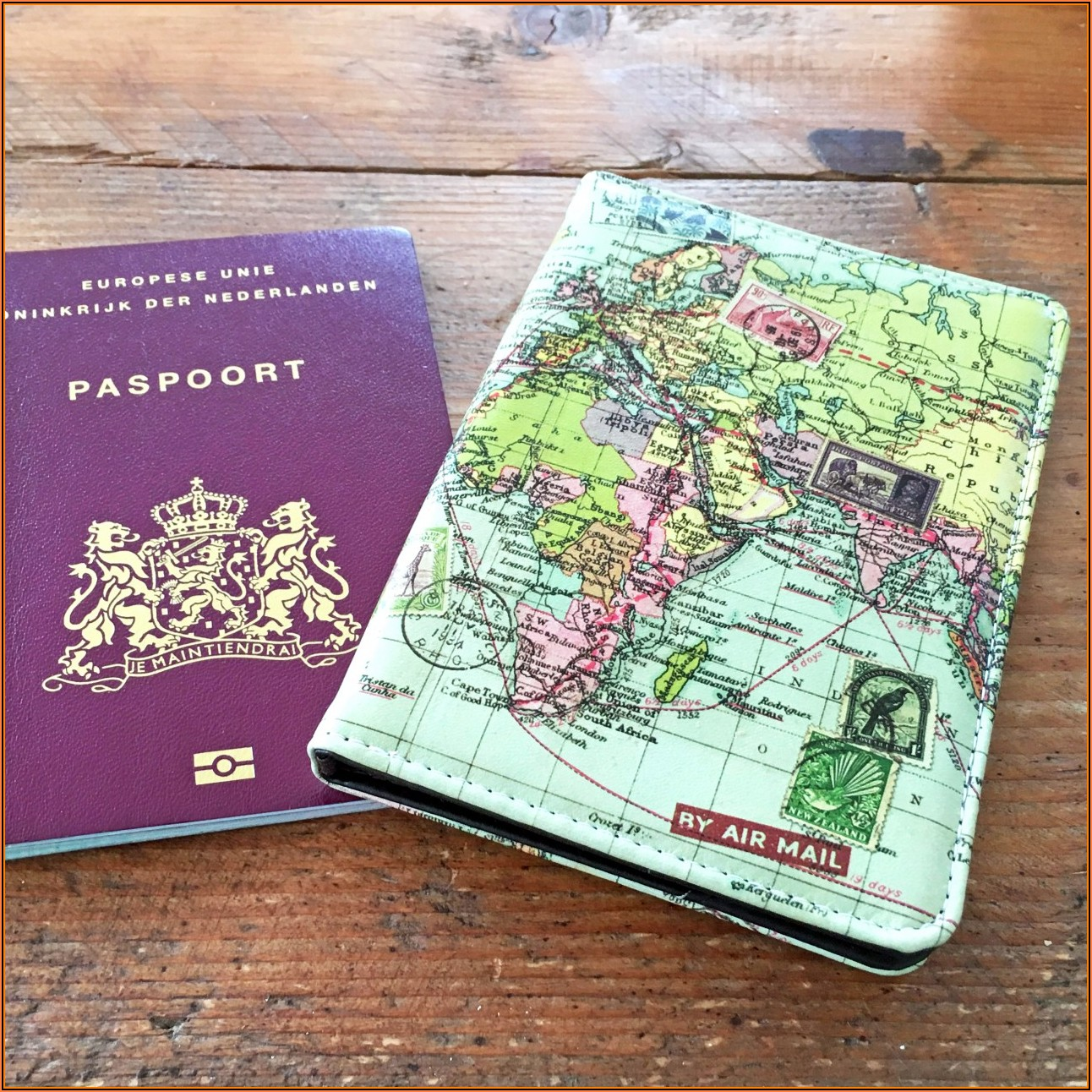 Colour In Map Passport Cover