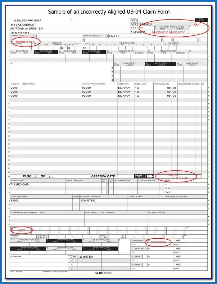 Download N 400 Citizenship Form Free