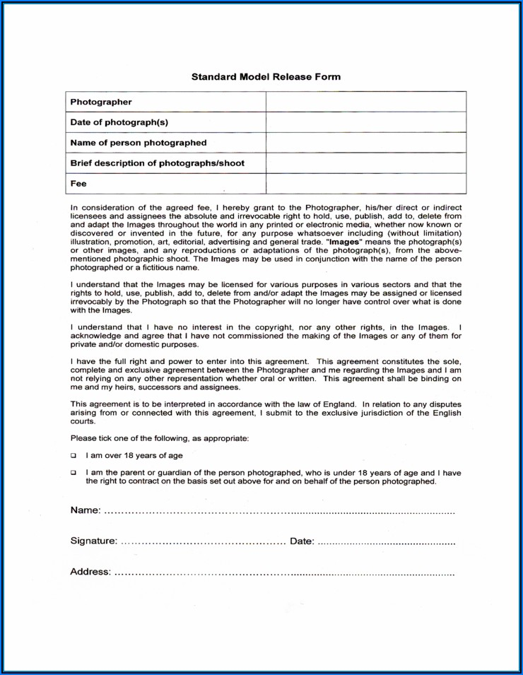 Model Release Form Free Download