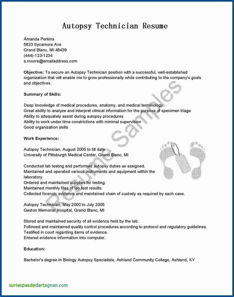 Www.michigan.govtaxes Form 5080