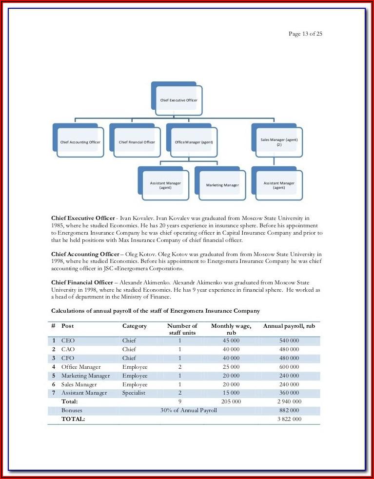 Bankable Business Plan Format