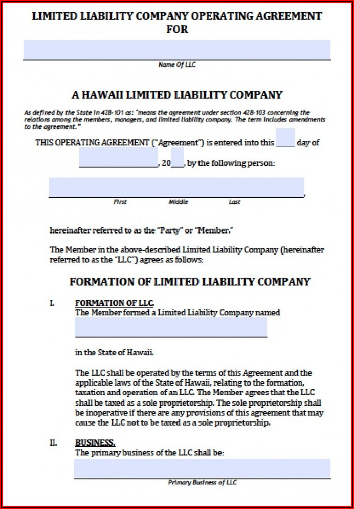 Llc Operating Agreement Amendment Sample