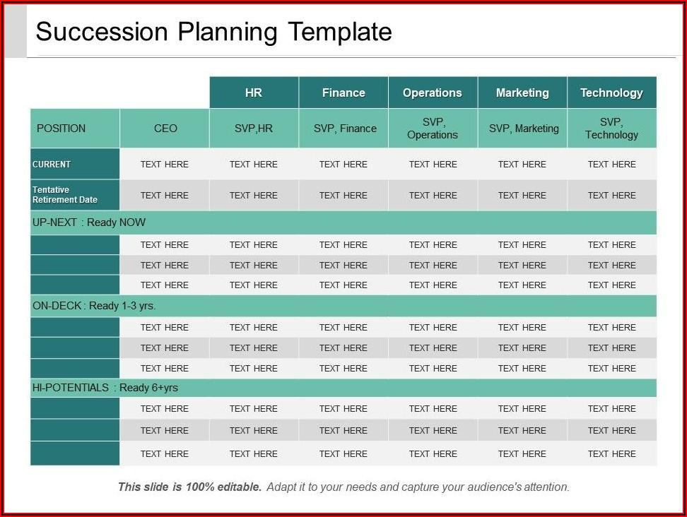 Management Succession Plan Example