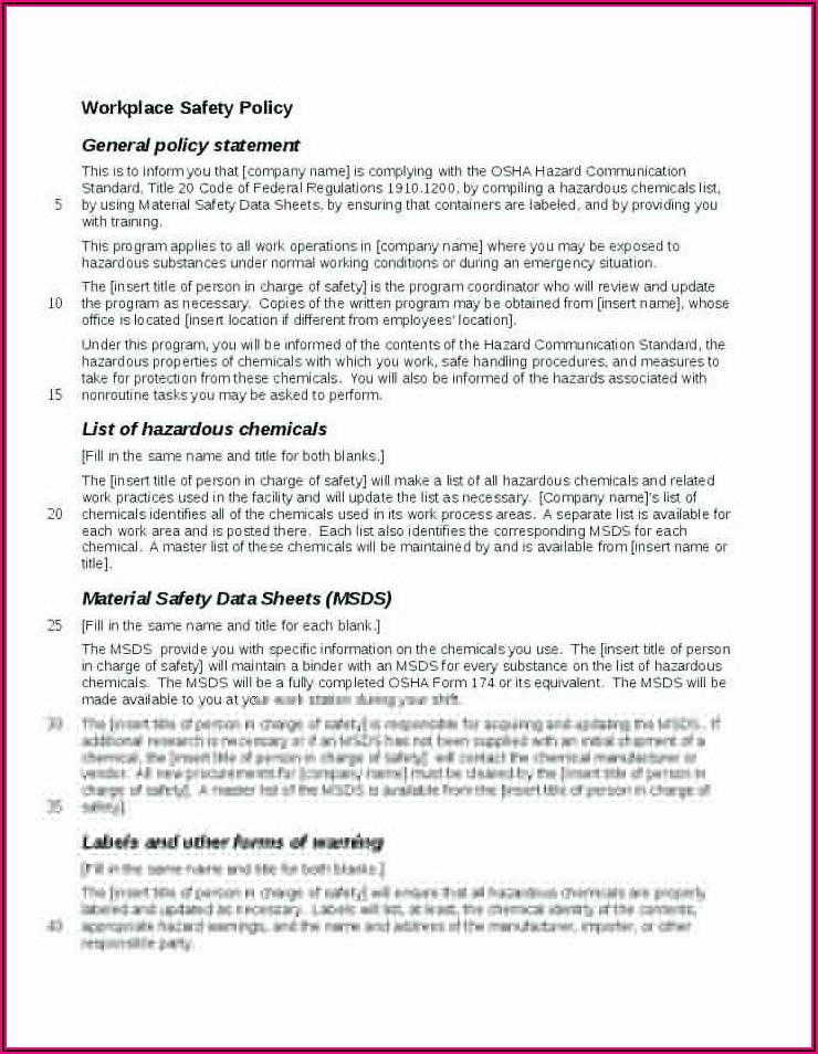 Osha Health And Safety Plan Template