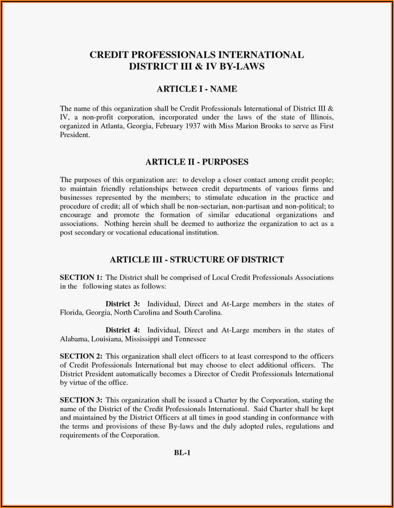 Articles Of Incorporation Georgia Llc Template