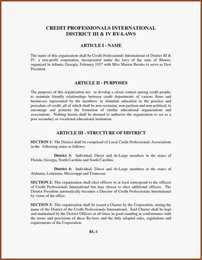 Articles Of Incorporation Georgia Llc Template