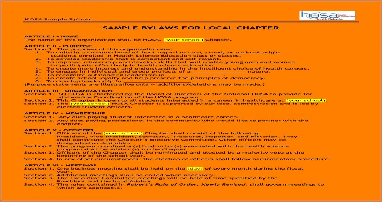 Board Bylaws Sample