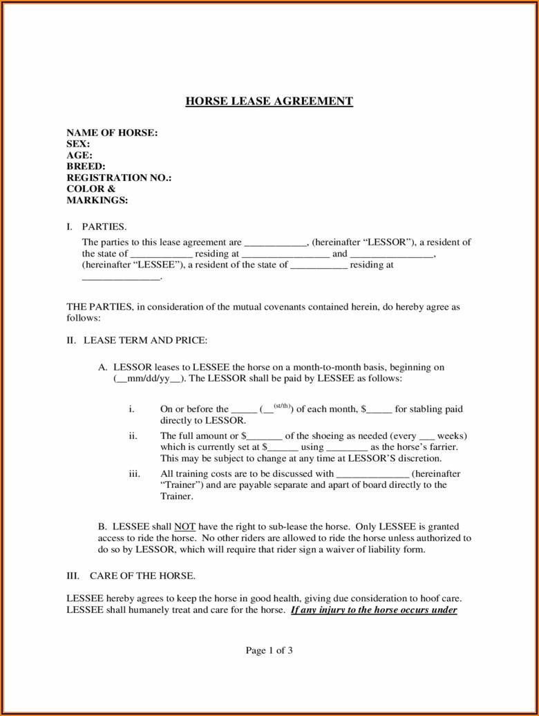 Partner Agreement Template Uk