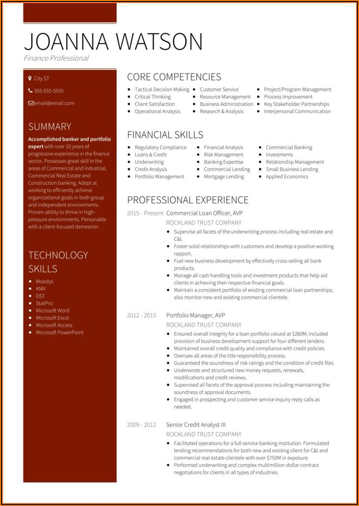 Top Executive Resume Templates
