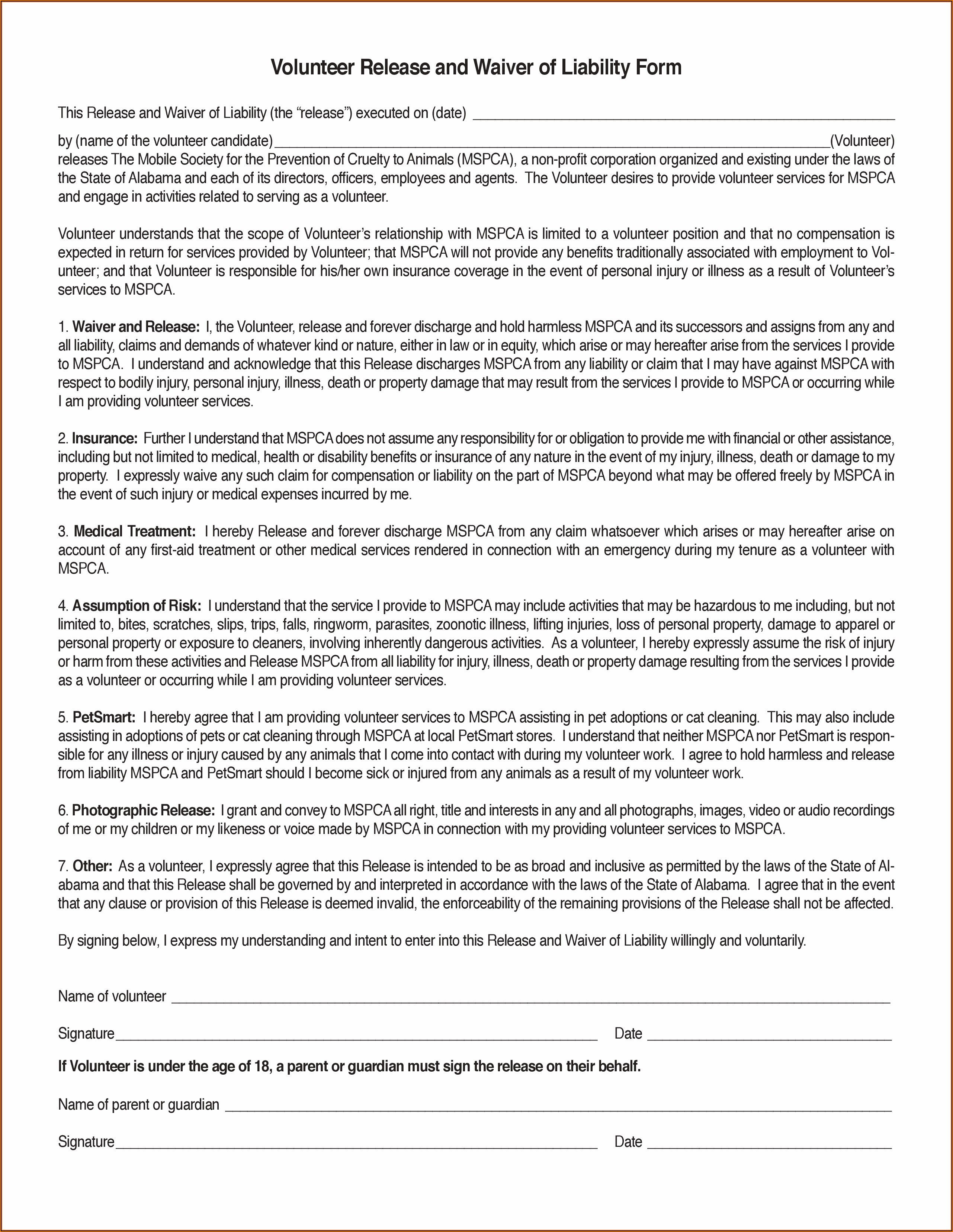 Volunteer Liability Waiver Template