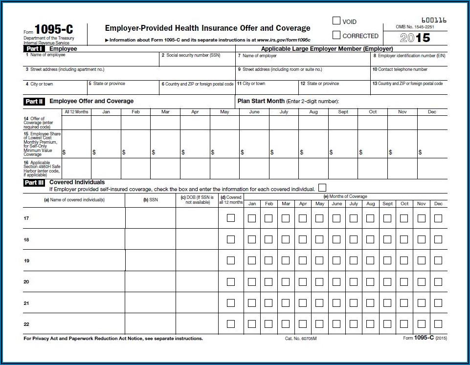 Form 1095 C Filing Requirements