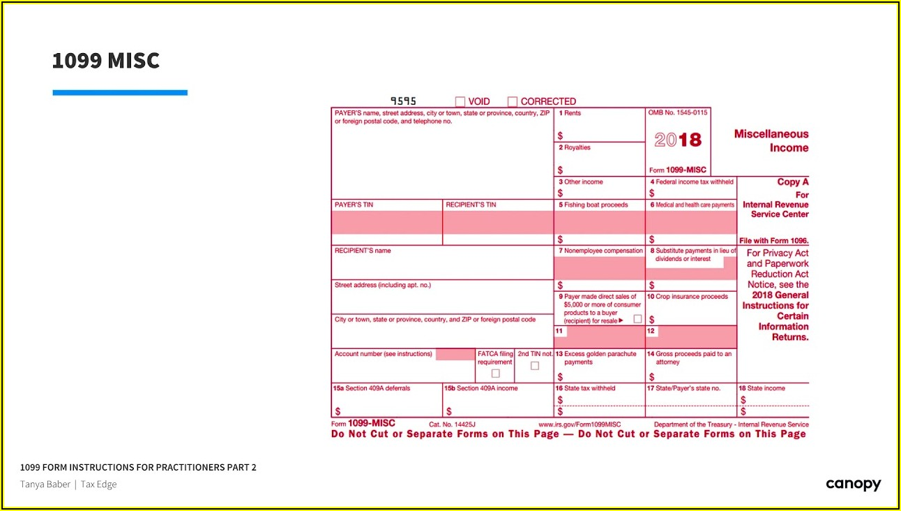 Irs 1099 Int Form Instructions