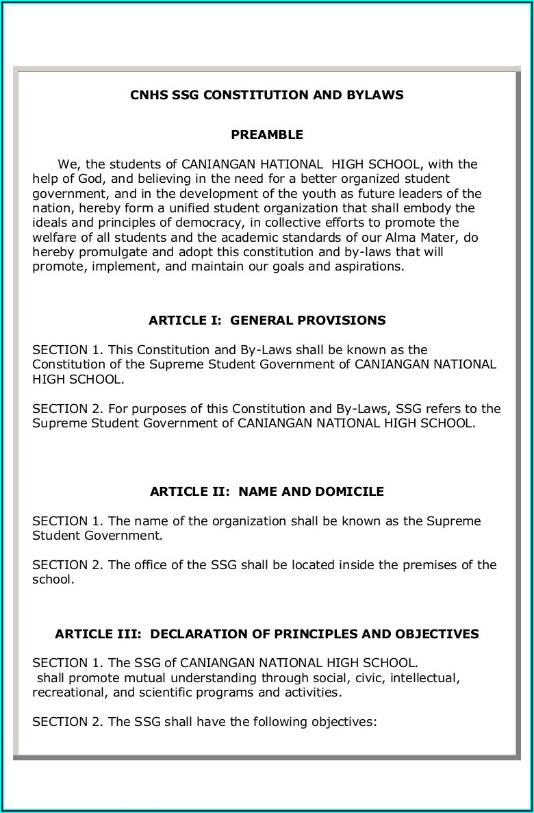 Sample Constitution And Bylaws Template