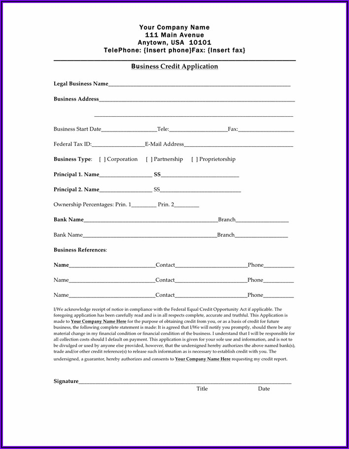 Business Credit Application Form Template Word