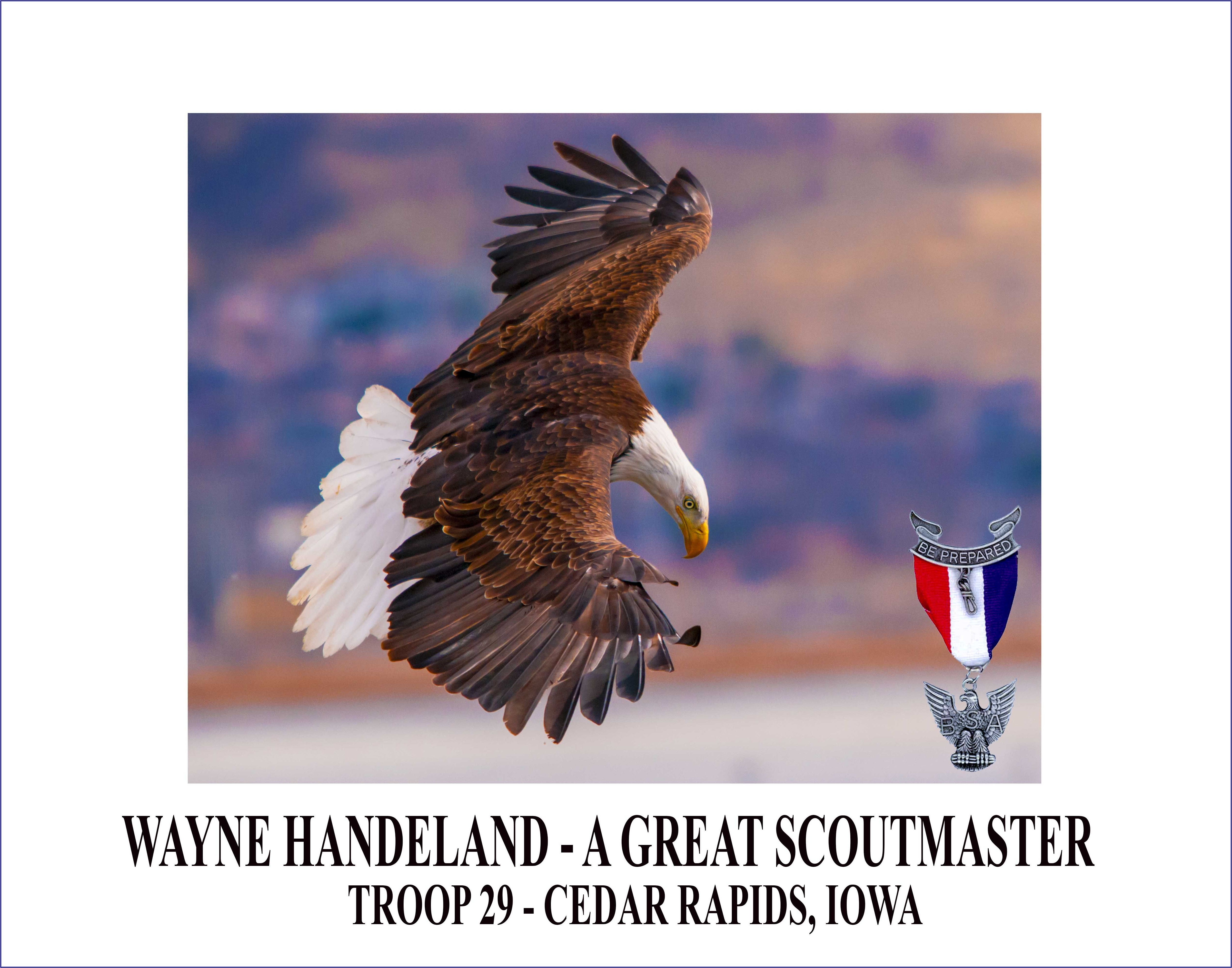Eagle Scout Invitations Free