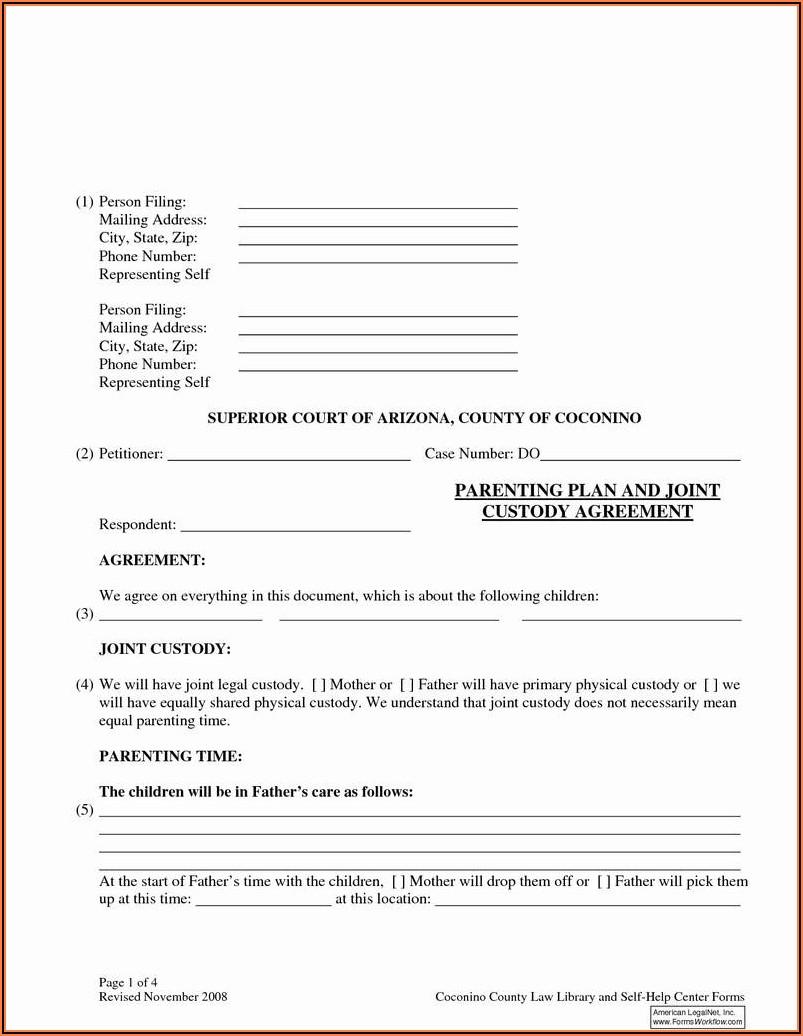 North Carolina Emergency Custody Form