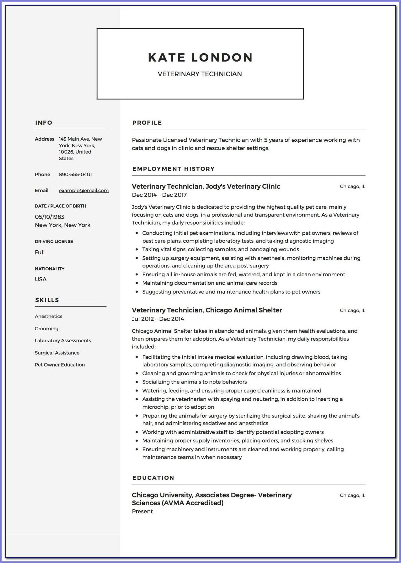 Veterinary Invoice Example