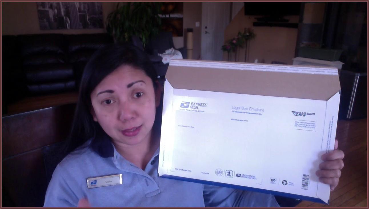 Priority Mail Express Envelope Image