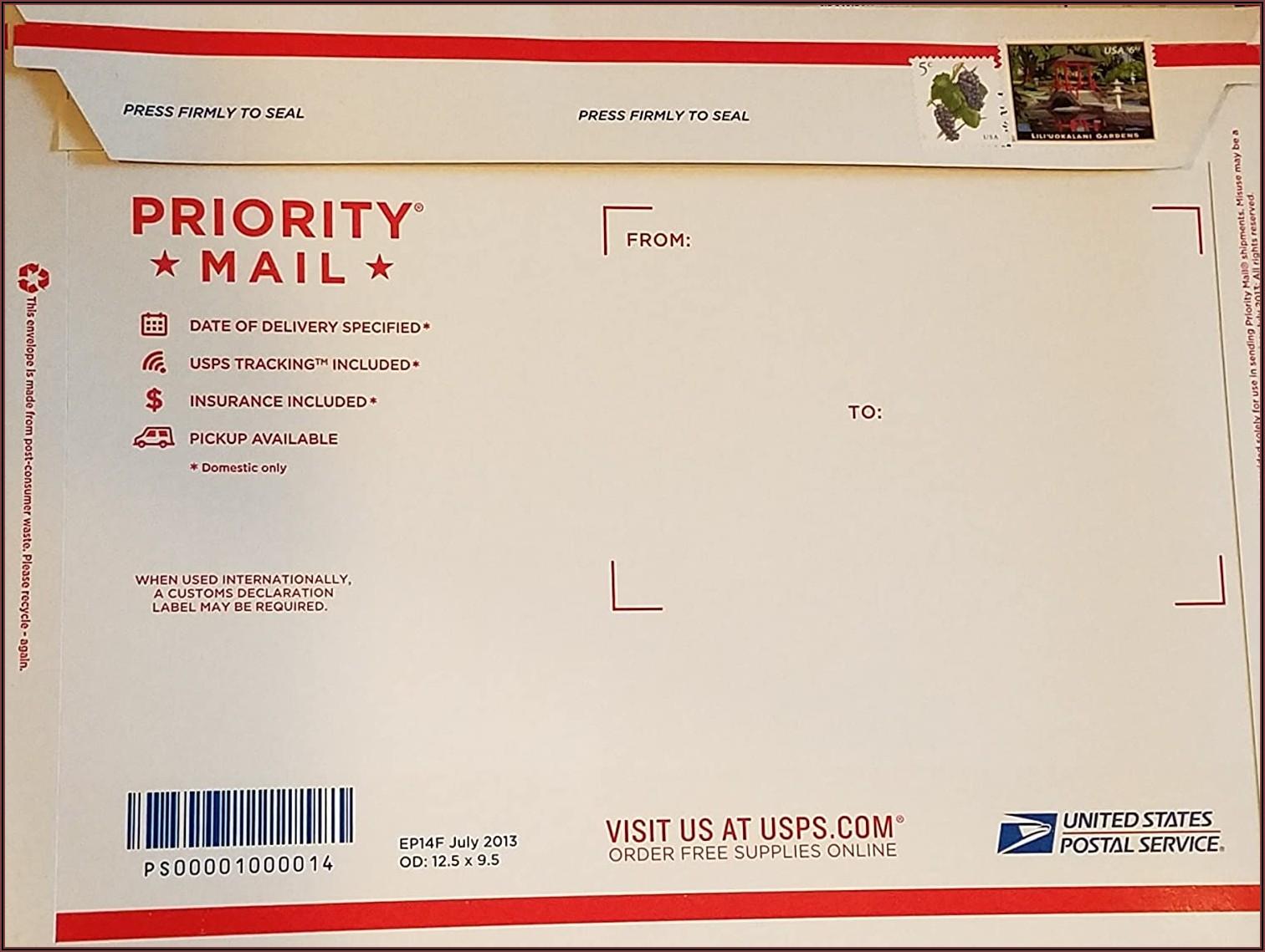 Priority Mail Postal Envelope