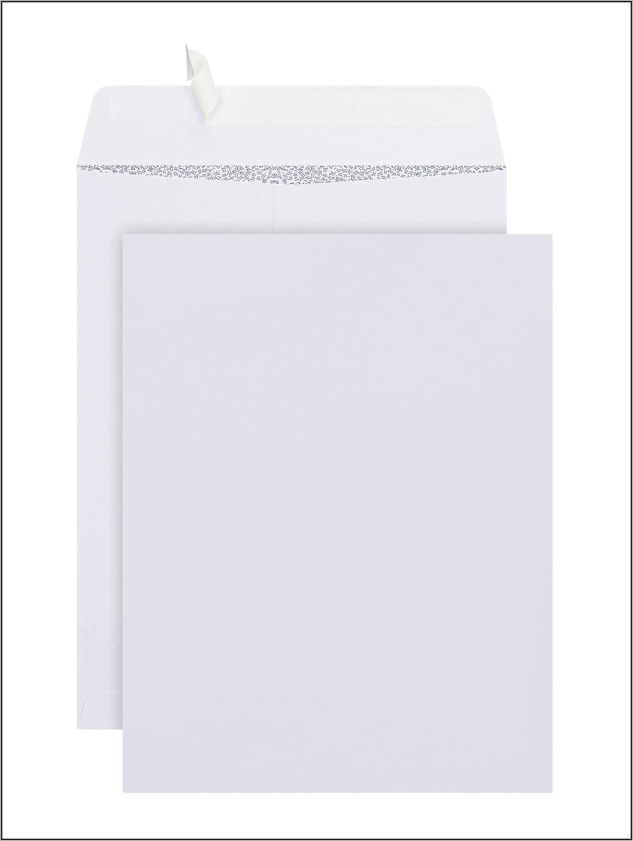 6 X 9 Booklet Envelopes Self Seal