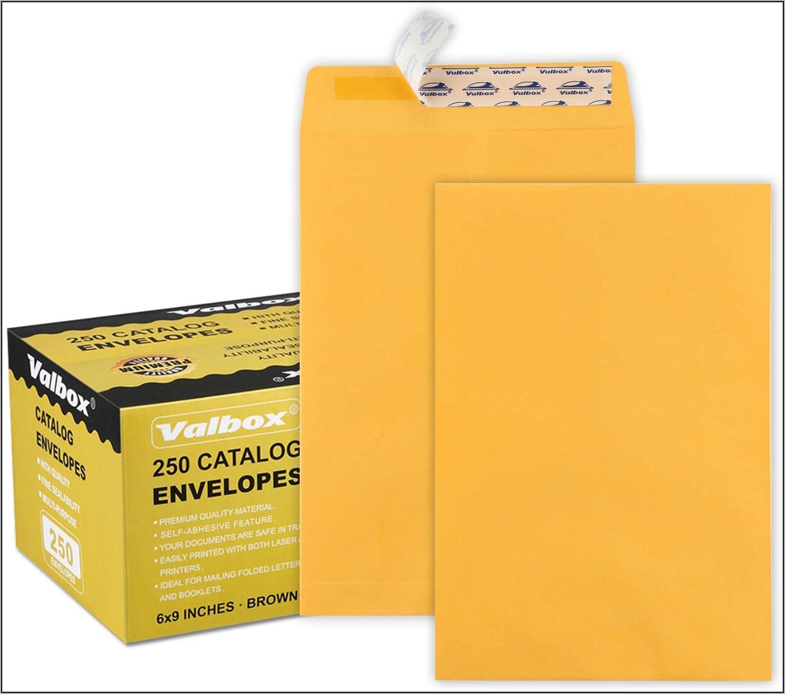 6 X 9 Booklet Window Envelopes