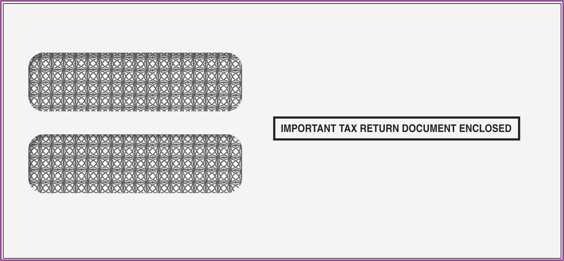 9x12 Double Window Envelope Template