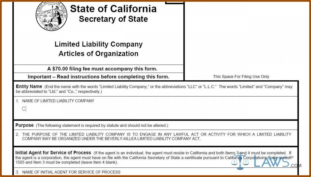 Forming An Llc In Michigan Articles Of Organization