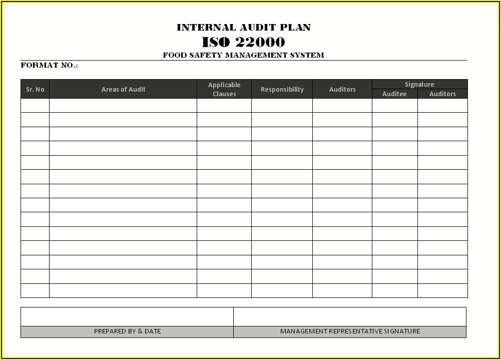 It Audit Planning Template