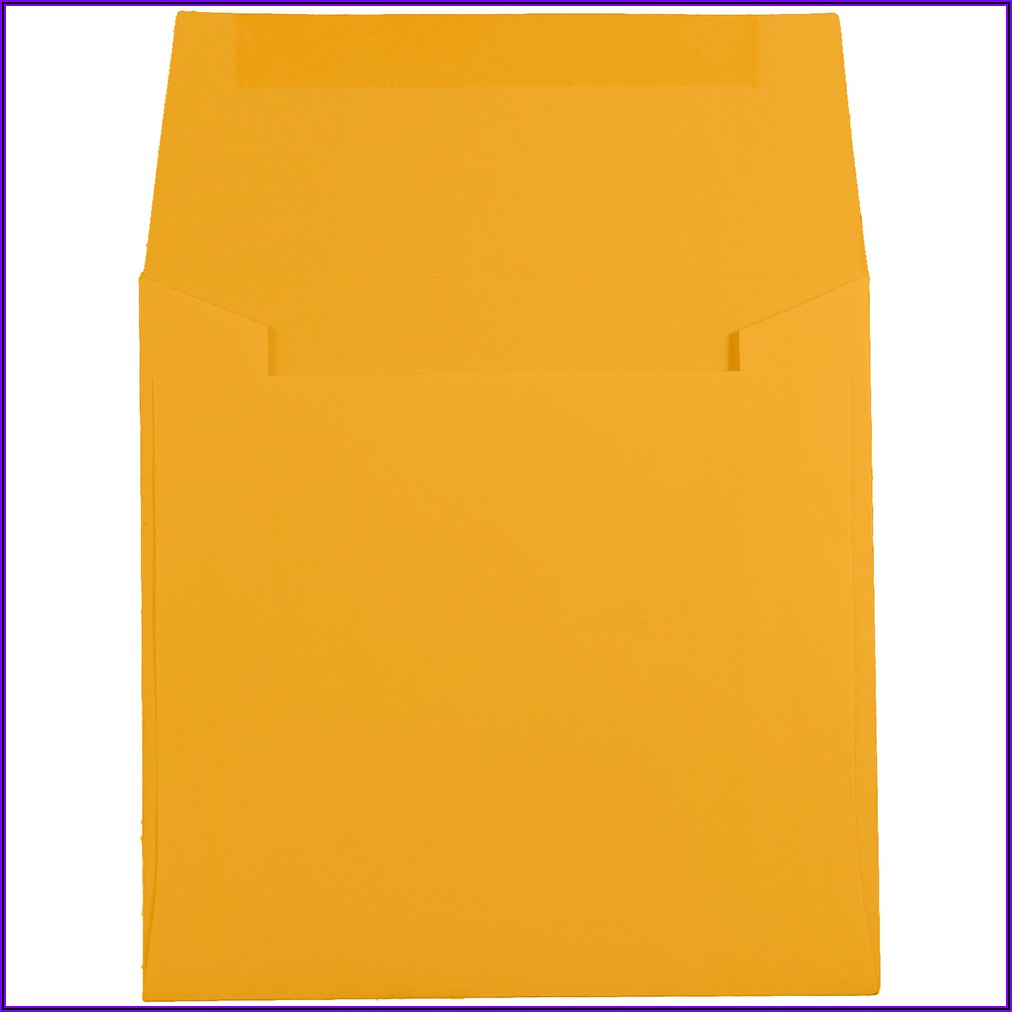 Poly Envelope With Zip Closure