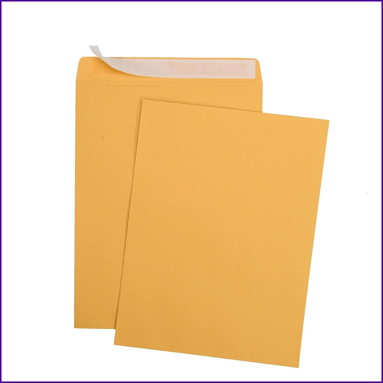 Self Seal Envelopes Bulk Pack White 9 X 12