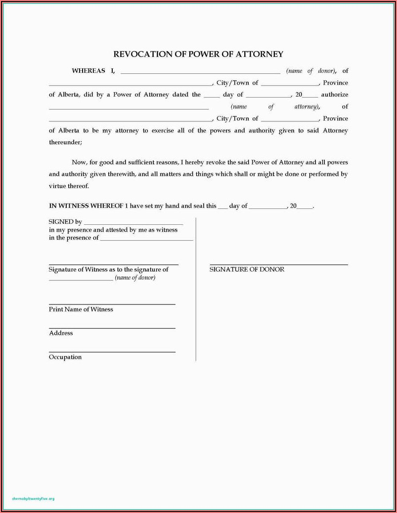 Special Power Of Attorney Format