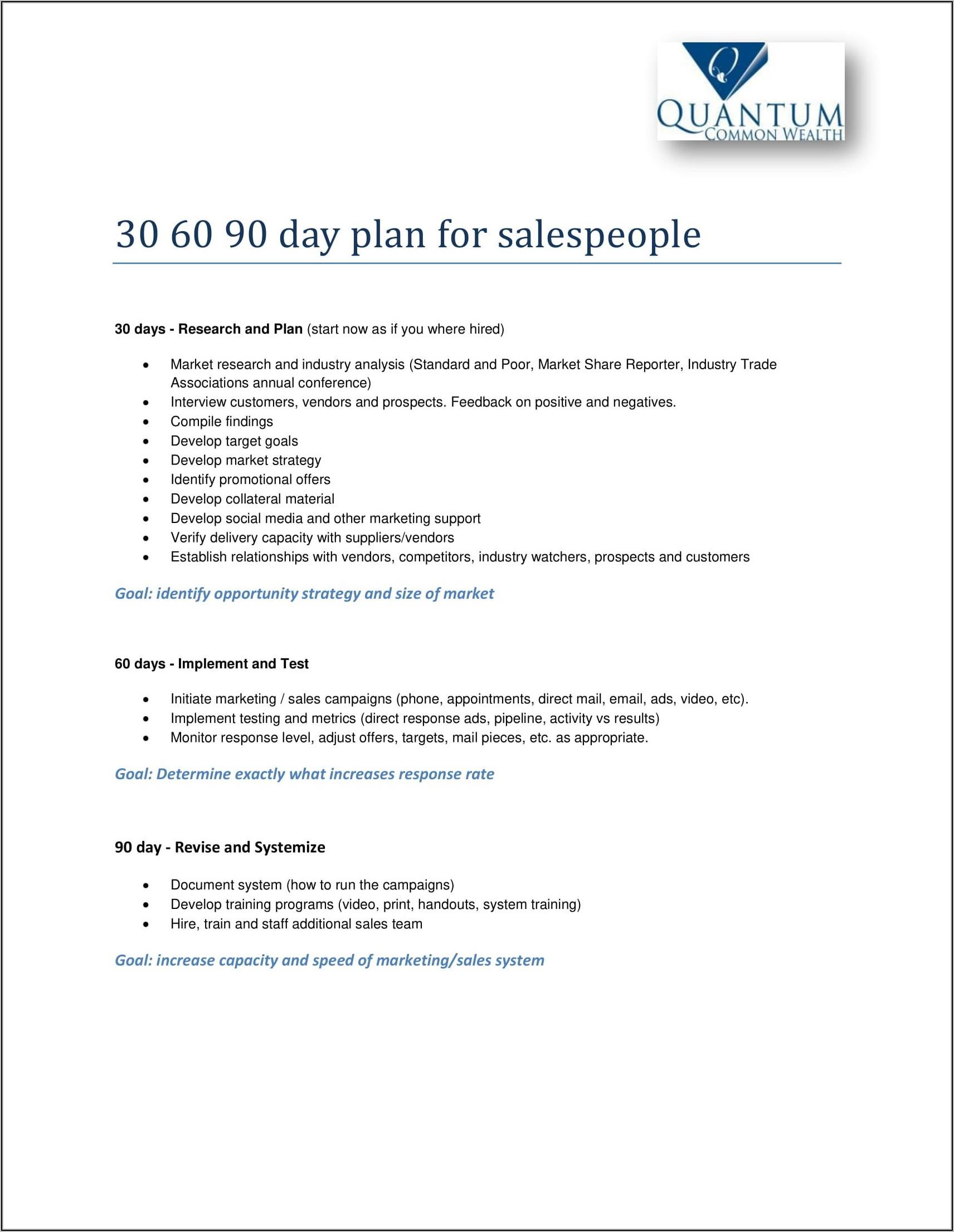 30 60 90 Sales Plan Examples