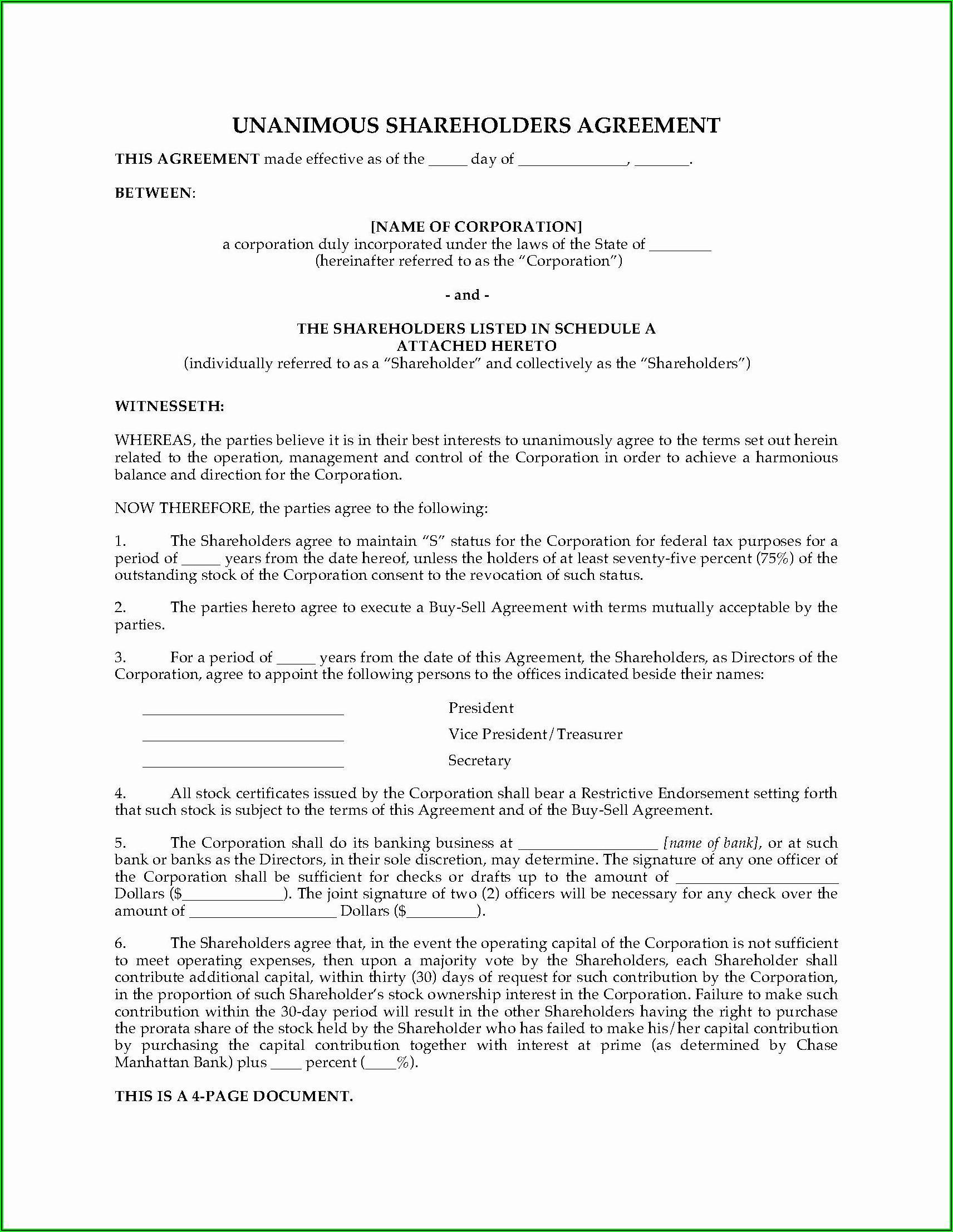 S Corporation Shareholder Agreement Template