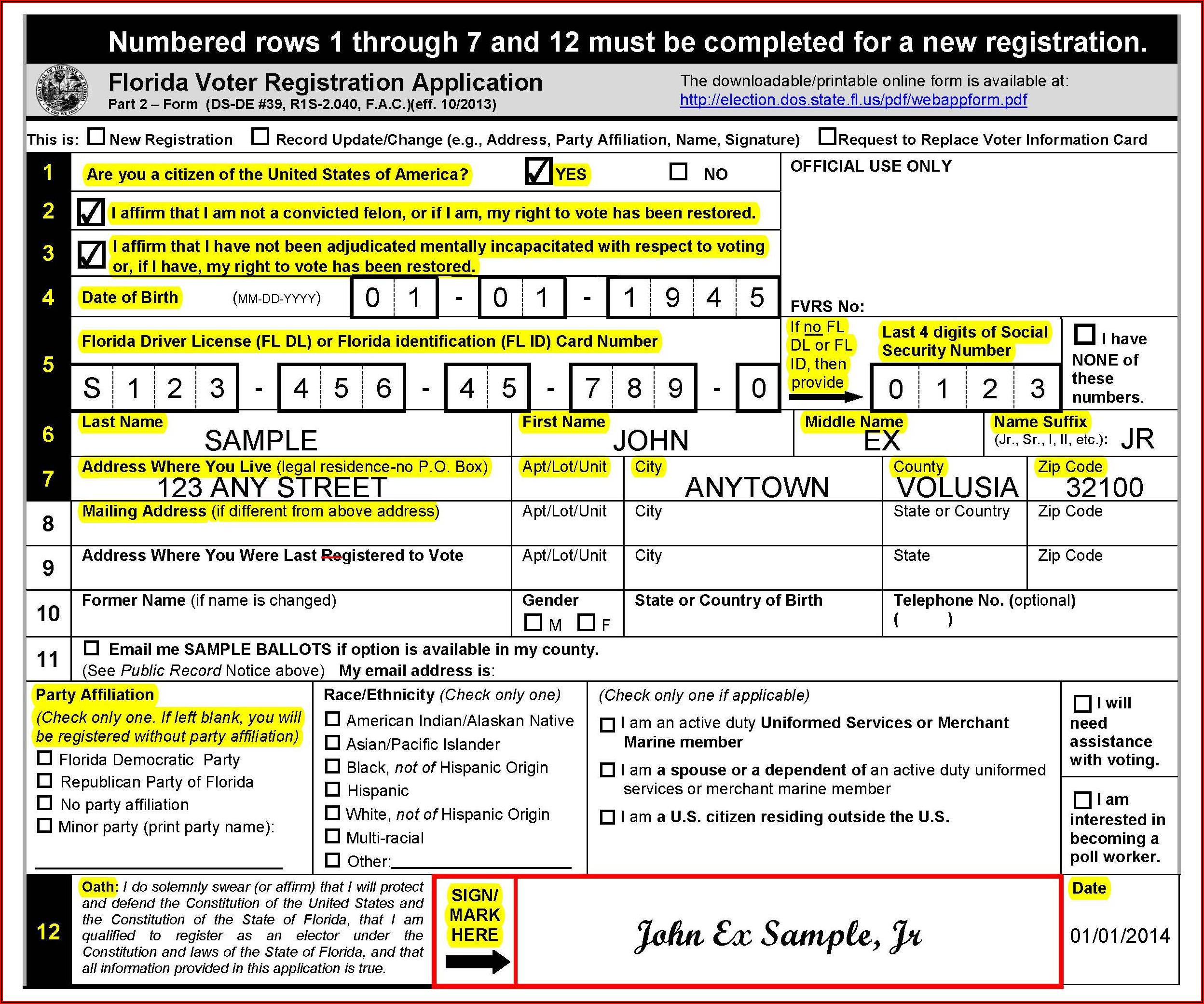 Sample Of Voter Application Form