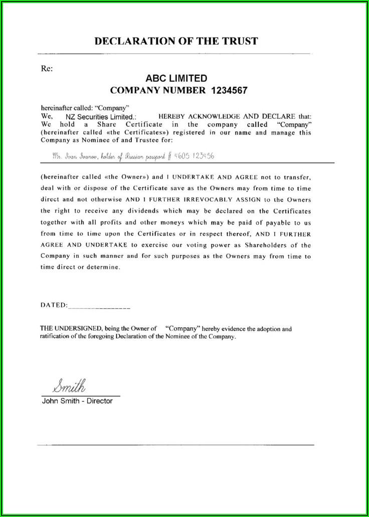 Shareholder Resolution Template Nz