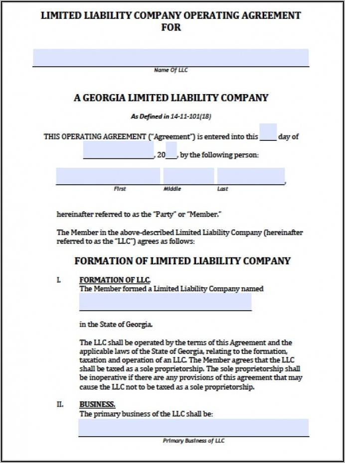 Single Member Llc Operating Agreement Sample Georgia