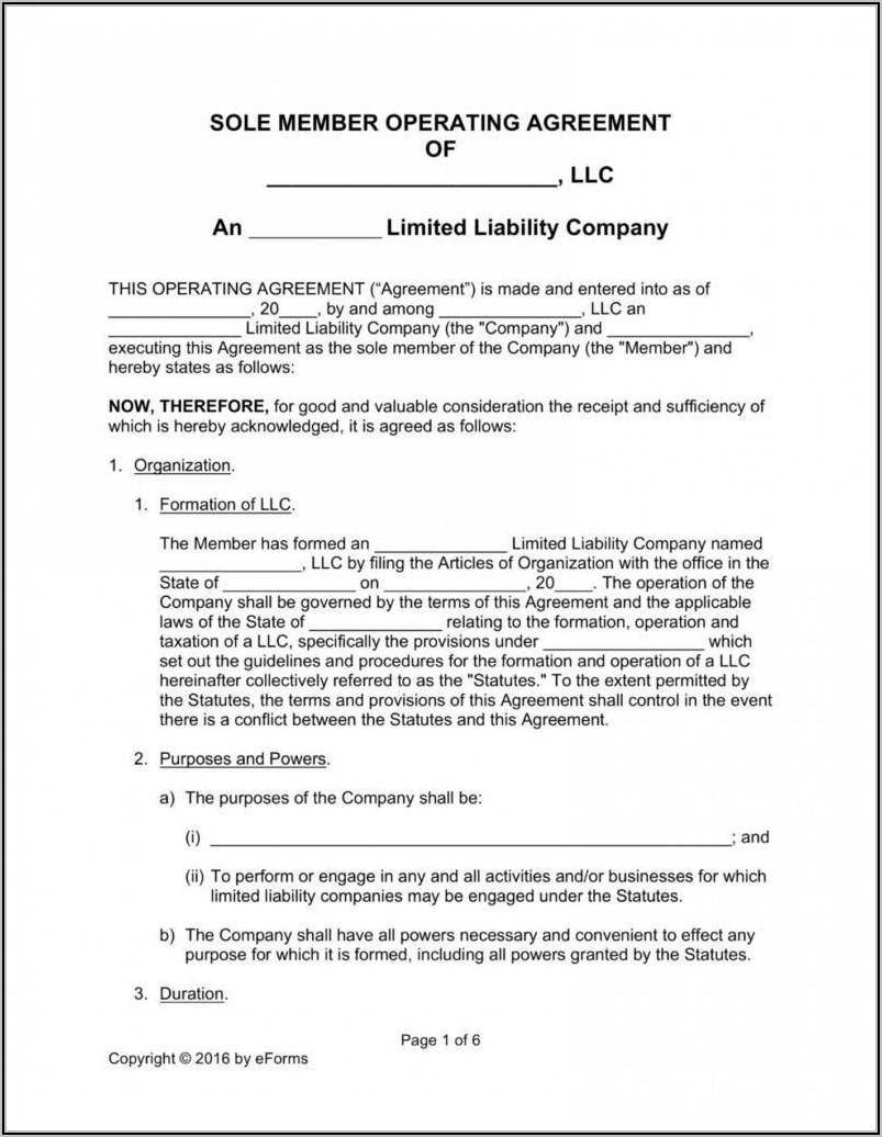 Single Member Llc Operating Agreement Template Florida