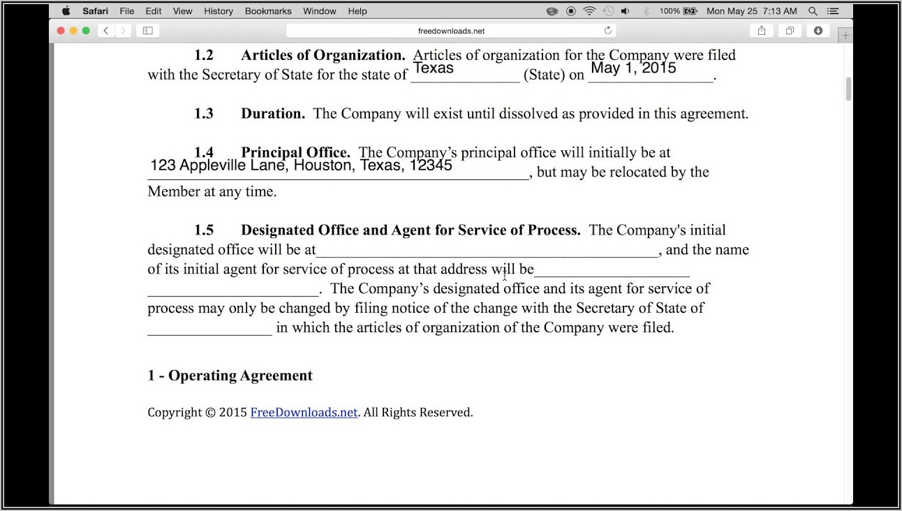Single Owner Llc Operating Agreement Template