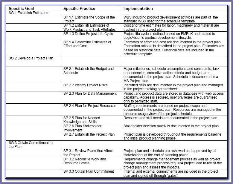 Client Case Management Plan Template