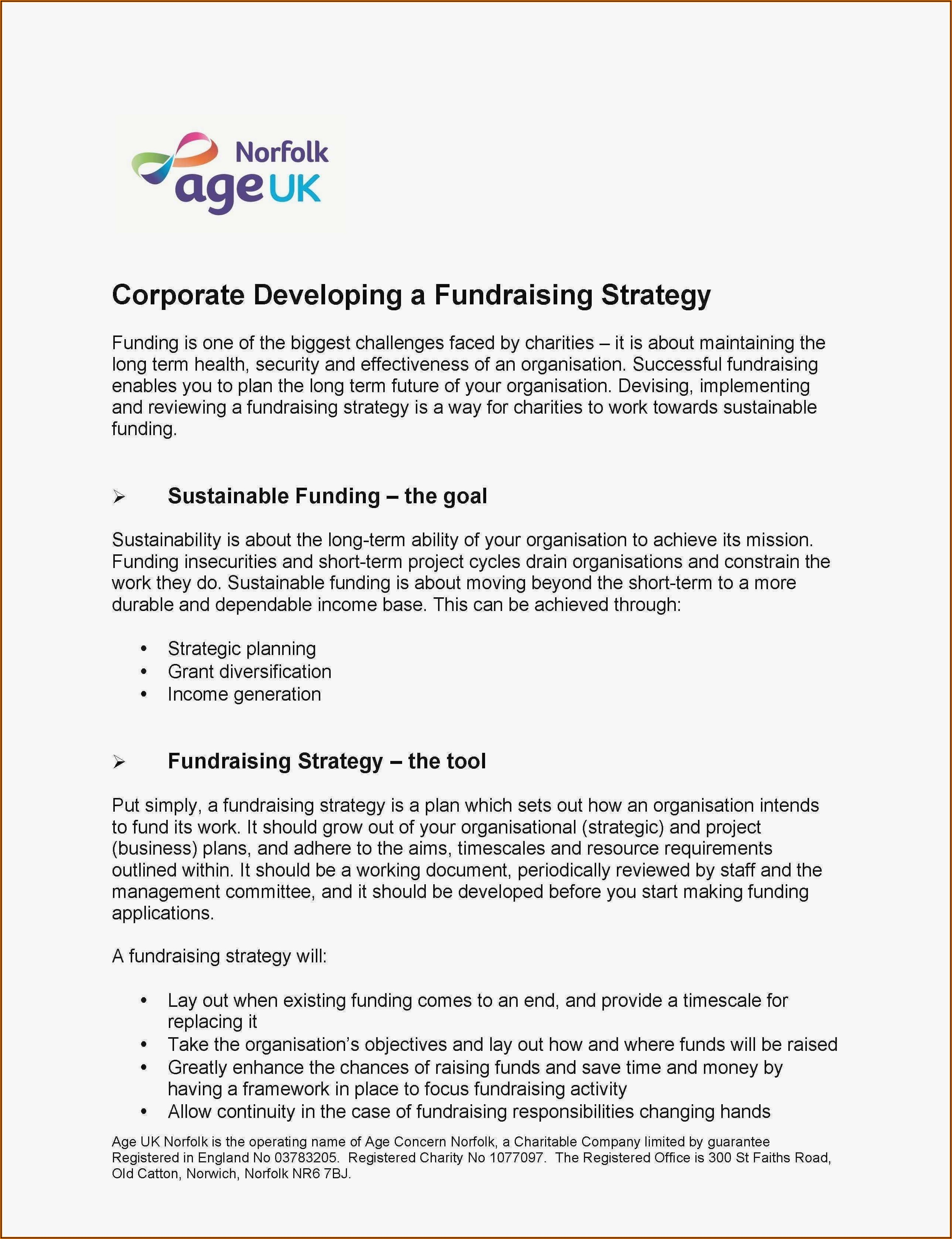 Fundraising Strategic Fundraising Plan Template