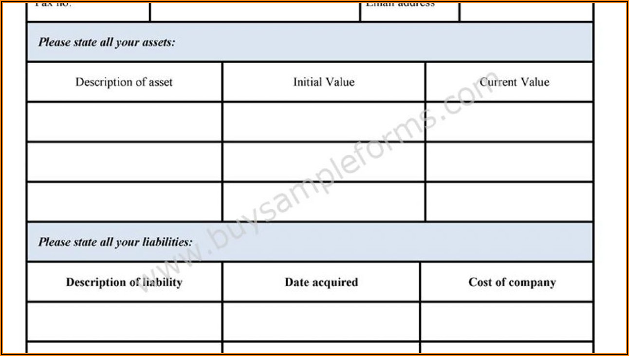 Sample Blank Personal Financial Statement Form