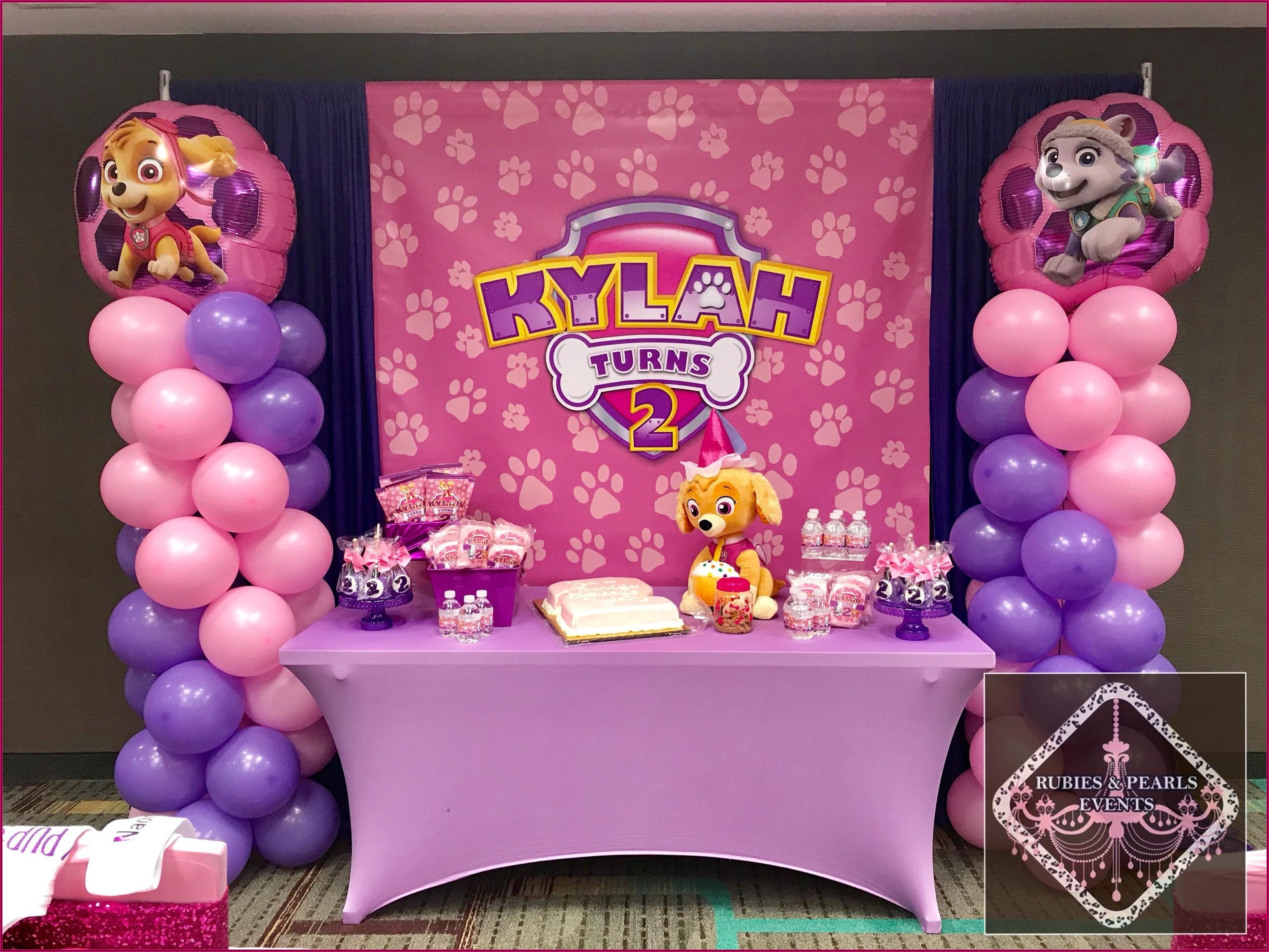 Skye Paw Patrol Birthday Party Ideas