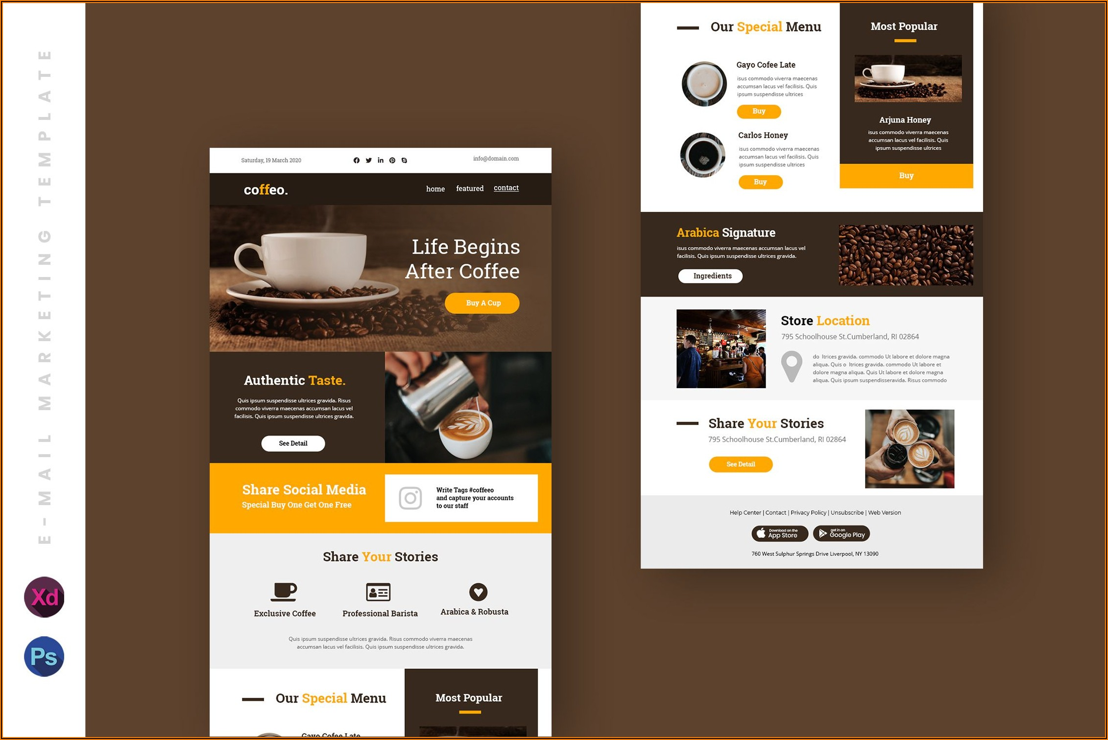 Wix Email Newsletter Templates