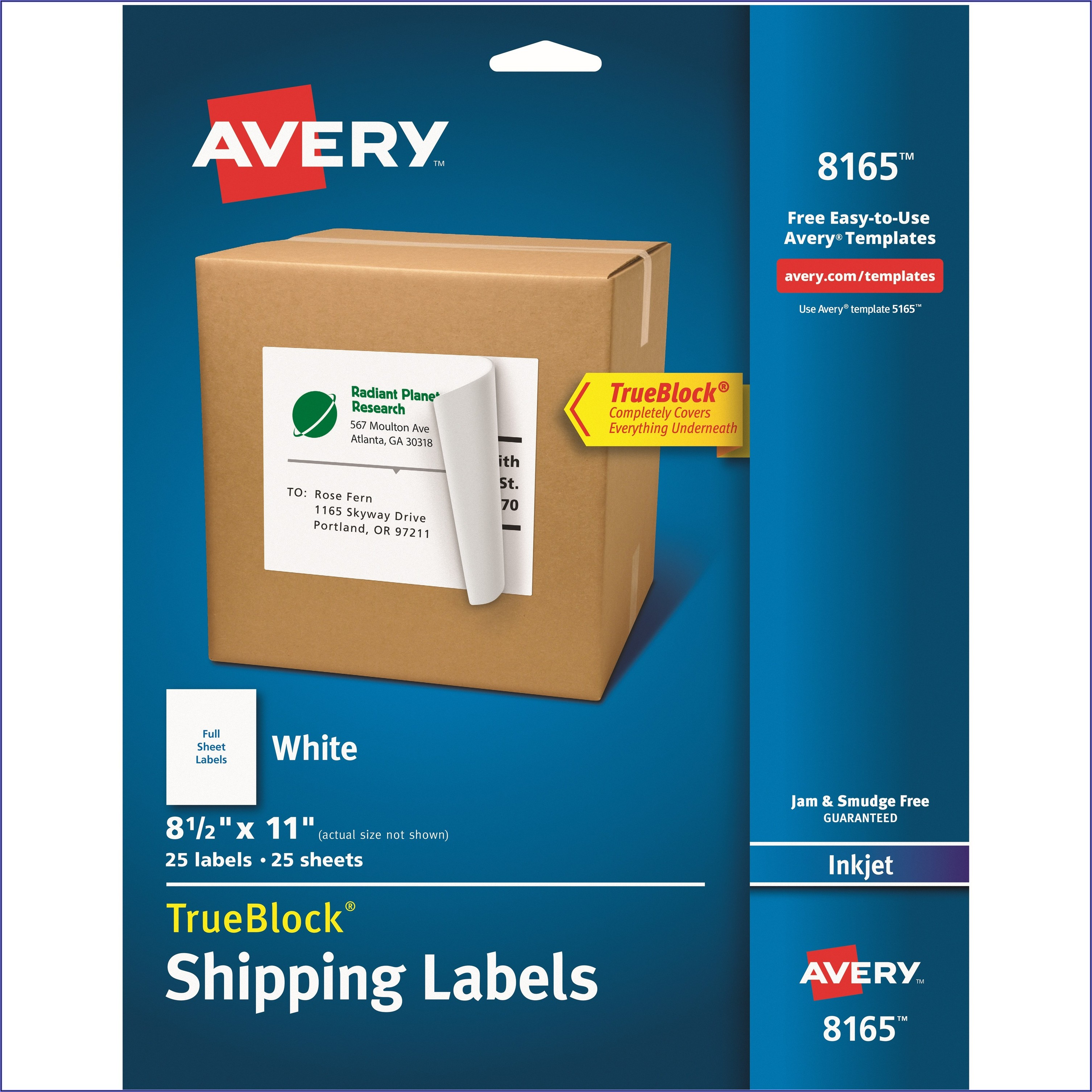 Avery 8.5 X 11 Label Template