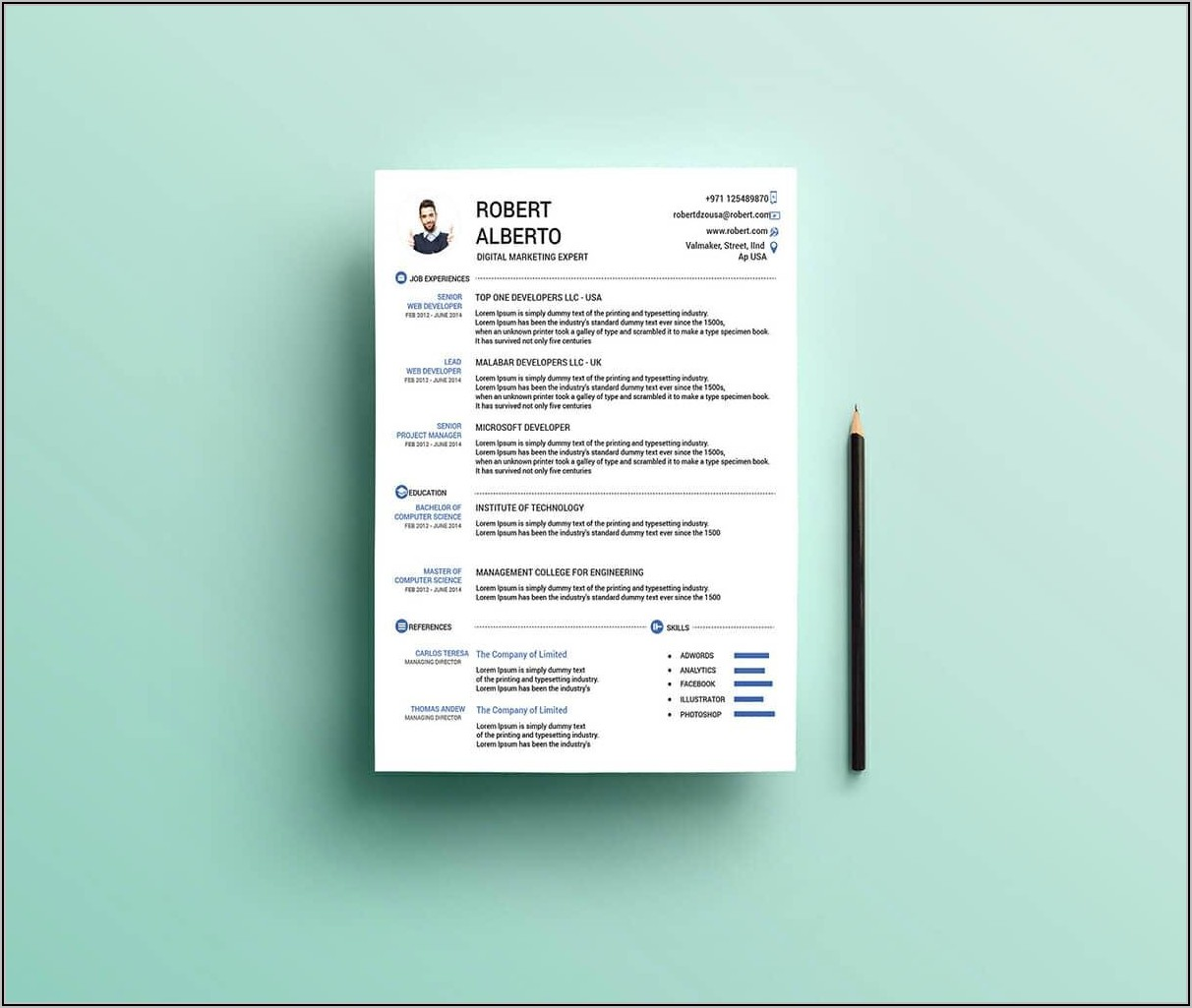 Free Resume Template For Project Manager