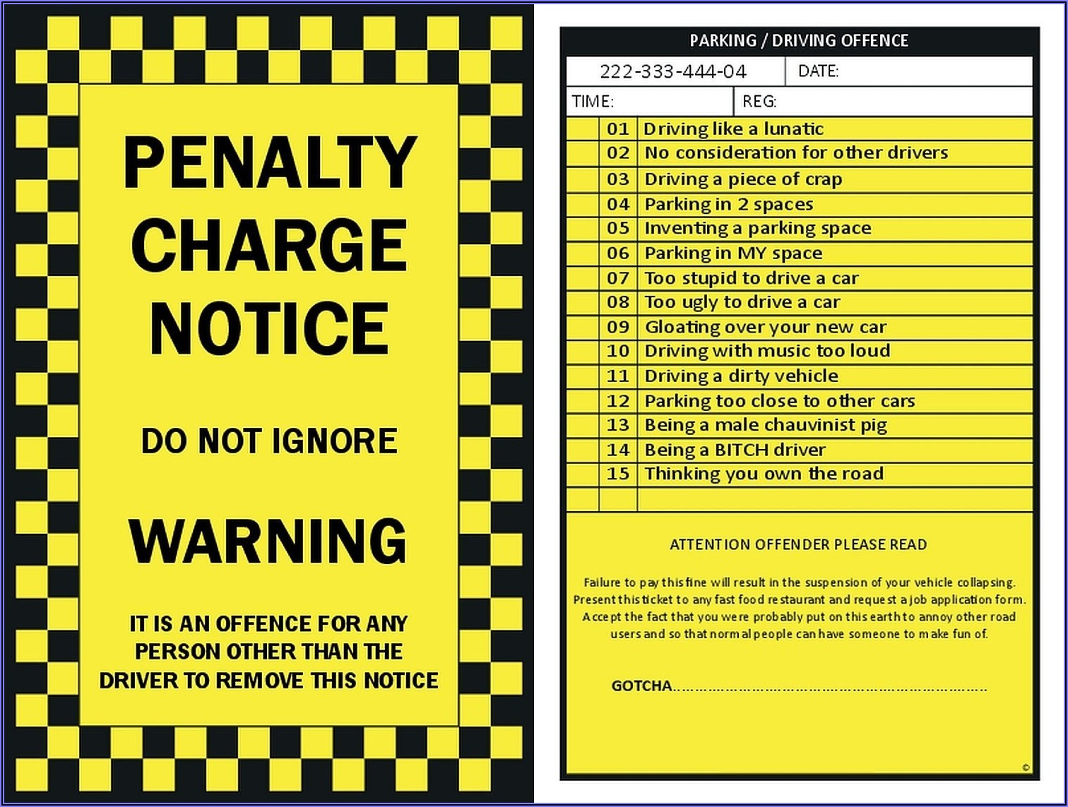 Police Ticket Template Word